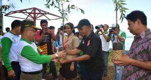 Wagub Djouhari Kansil menyerahkan bibit pohon untuk ditanam di gunung Tumpa