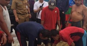 DR FRANGKY MANUMPIL MSI, Kepala Dinas Penanaman Modal dan Pelayanan Terpadu Satu Pintu Sulawesi Utara