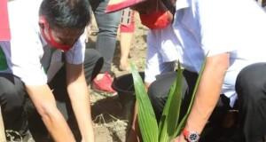 Gubernur Olly Dondokambey SE saat menanam Kelapa di perkebunan Minahasa Selatan, Rabu (19/08/2020)