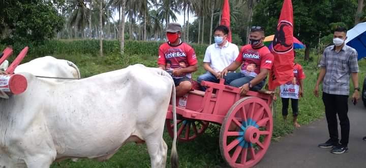 AA disambut dengan Roda Sapi saat hadiri kegiatan di Mapanget Barat