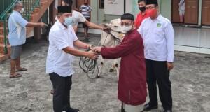 Hewan Kurban yang diserahkan oleh Ketua Dewan diterima oleh imam masjid didampingi Ketua MUI.